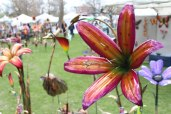 May art-in-the-park-2014-10