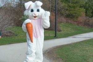 event_bunny