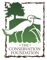 CONS Logo 2014 4C.jpg